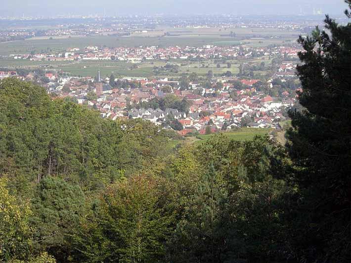 Pfälzerwald, Deidesheim