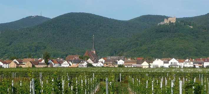 Diedesfeld bei Neustadt an der Weinstrasse