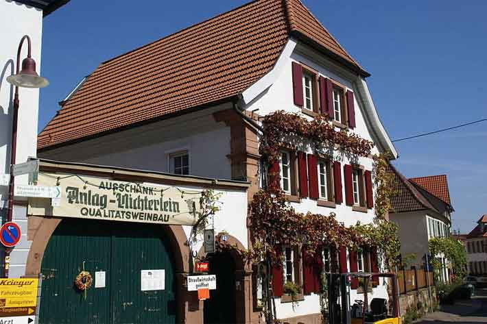 Theresienstrasse in Rhodt unter Rietburg